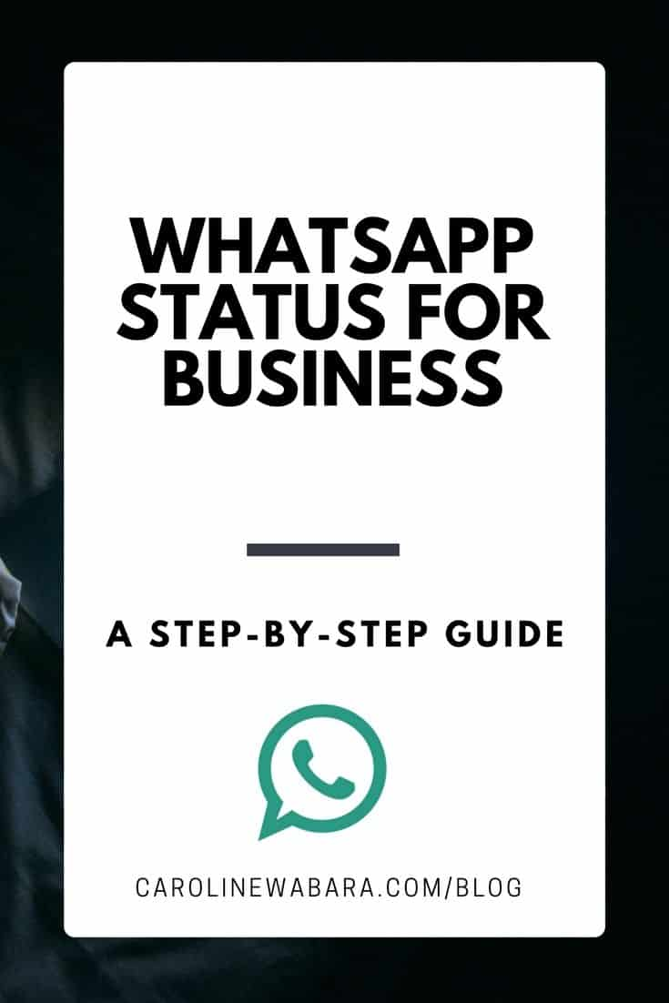 How I Use Whatsapp Status Update For Promoting My Business + Content Format